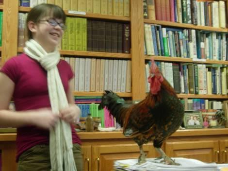 rooster-2.jpg